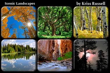 Scenic_Landscape_Collection